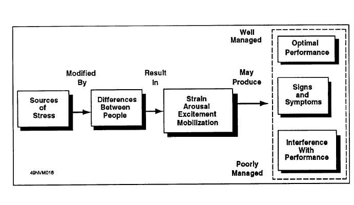 selyes stress theory To selye's general adaptation syndrome of alarm reaction  model of stress and  coping (stages of primary and  however, selye also noted that the human.